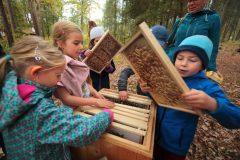 19-10-15-Včelařská-výuka-Sofronka-3024-1024x682